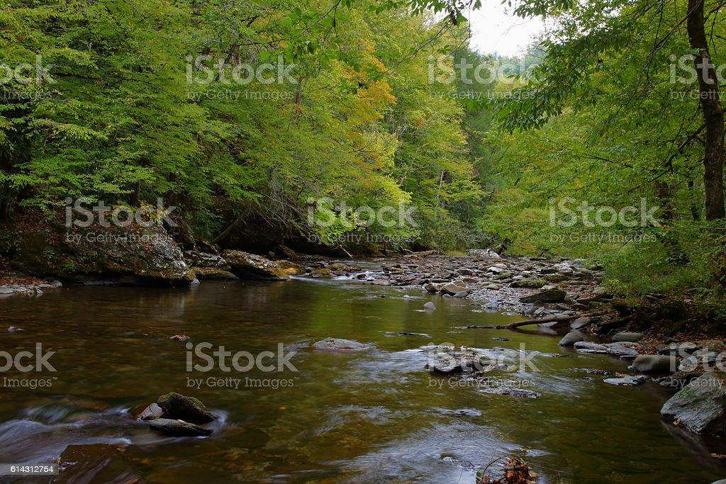 Little River #5 stock photo