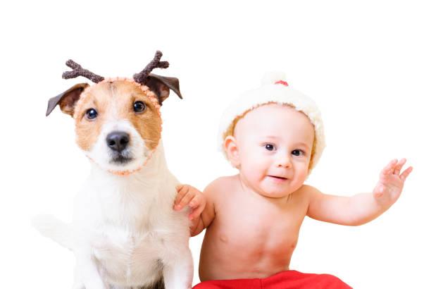 Little santa clause and his funny reindeer isolated on white picture id840202806?b=1&k=6&m=840202806&s=612x612&w=0&h=gd v a44l5dmdtwfvbv1clj ovnw9lykbpqmnvonpbi=