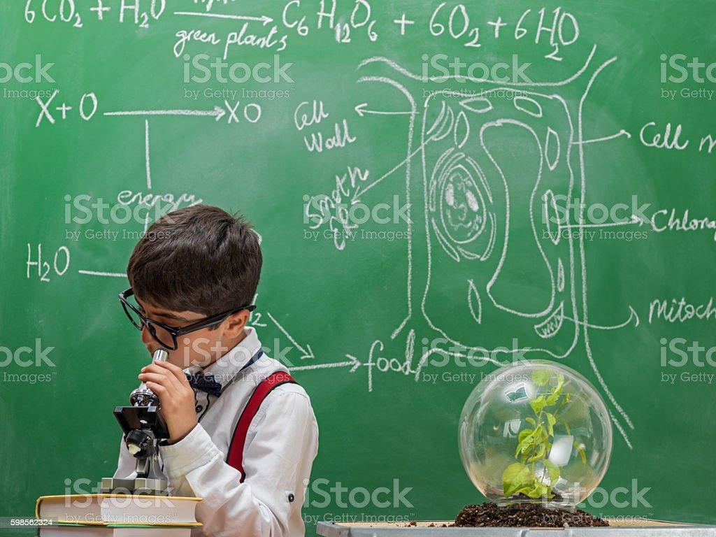 Little school boy looking through microscope stock photo
