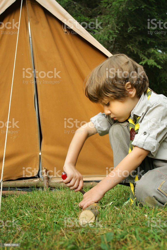 Little scout boy stock photo