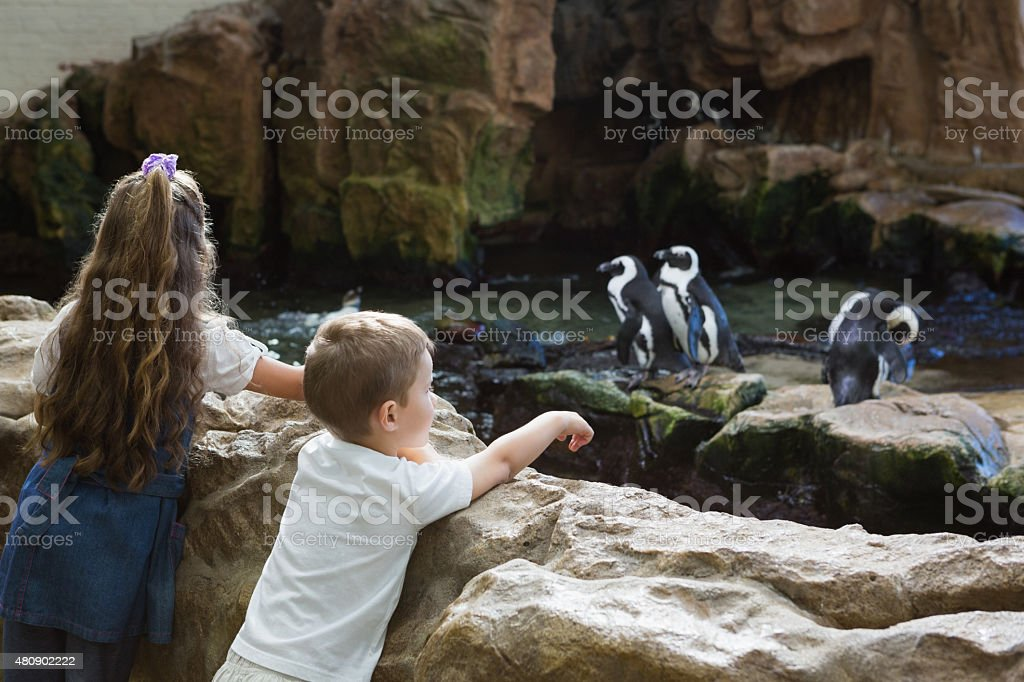 Petits frères et sœurs à examiner penguins photo libre de droits