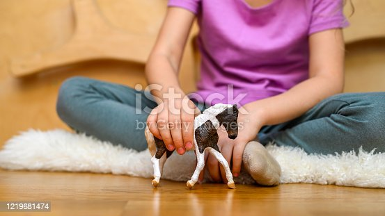 kid, playing, home, toy, isolation, boredom, caucasian, child, childhood, children, concept, corona, covid-19, day, domestic, entertainment, european, family, figure, figurine, floor, gen a, girl, hand, happy, holding, horse, house, indoor, interior, kids, life, lifestyle, little, love, one, pastime, people, person, preschooler, quarantine, safe, self, single, sitting, stay, time, toddler, toys, virus