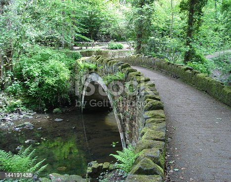 This little old stone bridge is in a very woody park --- Jesmond Dene in Newcastle England