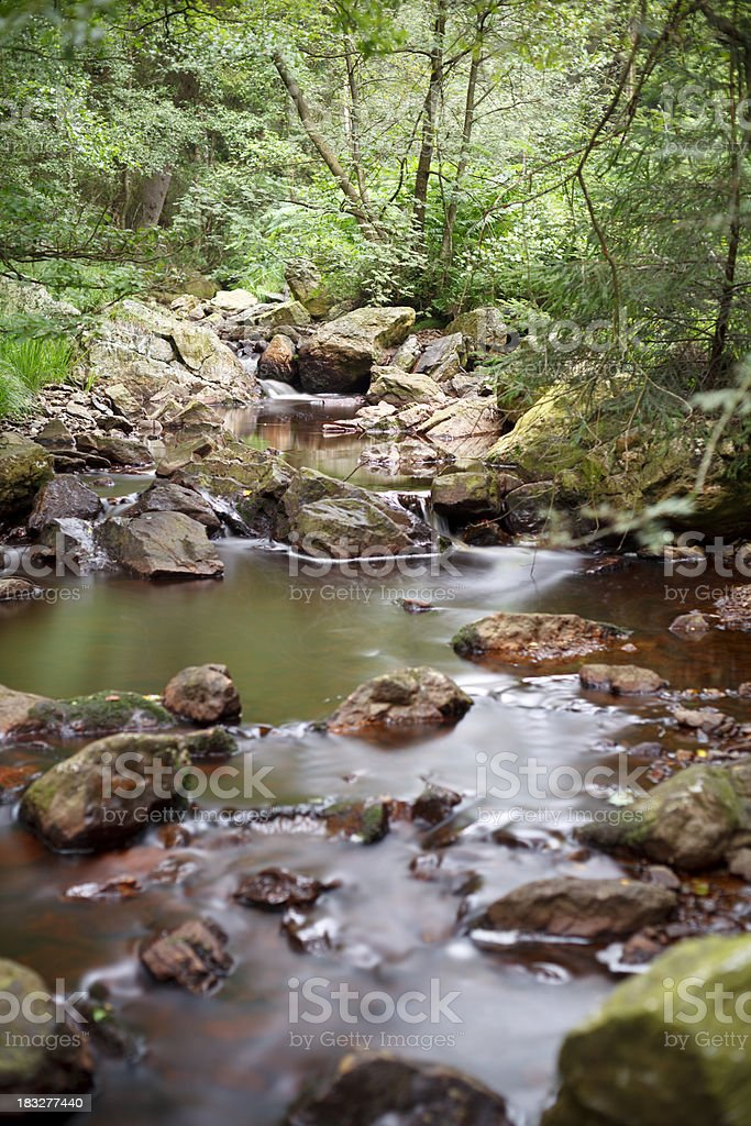 Little Stream Long Exposure royalty-free stock photo