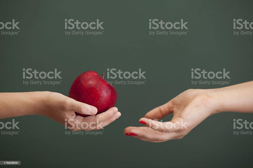 Little student hand giving red apple to teacher before blackboard stock photo