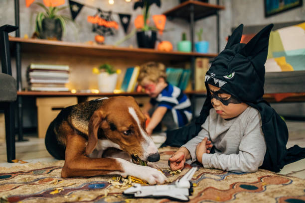 Little superhero and his dog spending fun time together during Halloween season stock photo