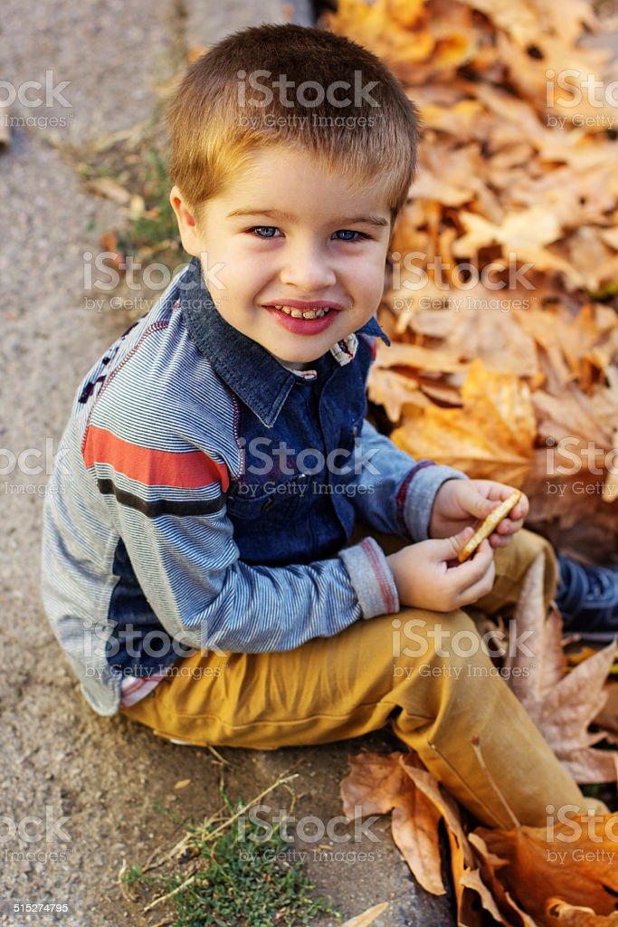Little toddler boy in autumn park stock photo