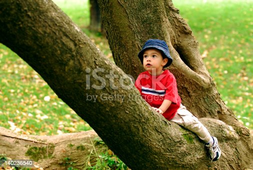 istock Little Tree Climber 140236540