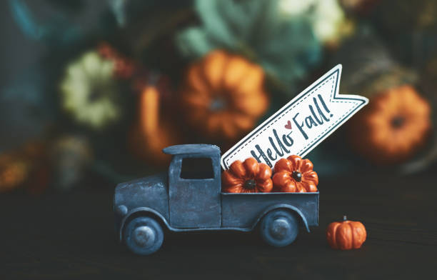 little truck with load of miniature pumpkins for fall and thanksgiving - autumn foto e immagini stock