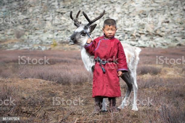 Little tsaatan boy with a reindeer picture id857457324?b=1&k=6&m=857457324&s=612x612&h=2685g3fwhnfbki5knq ecqgp9kdykk19vwh7hfaydyq=