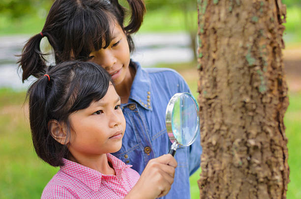 Little two girl examining the tree picture id613329024?b=1&k=6&m=613329024&s=612x612&w=0&h=9ifflzzpf65g 9n7kgukdwmlbfp3eugh4egj6bghfdq=
