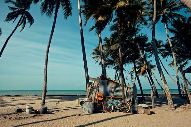 pequena casa no vietname seacoast entre as palmas das mãos e areia - fishman imagens e fotografias de stock