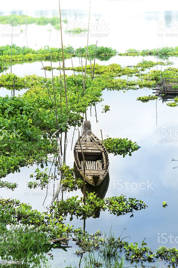Little wooden boat on the river covered by water hyacinth royalty-free stock photo