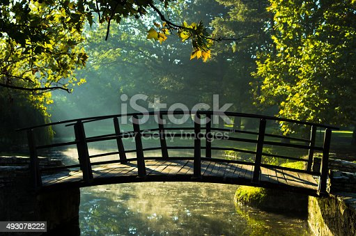 Little wooden bridge on first sunrays at sunny autumn morning in Topcider park