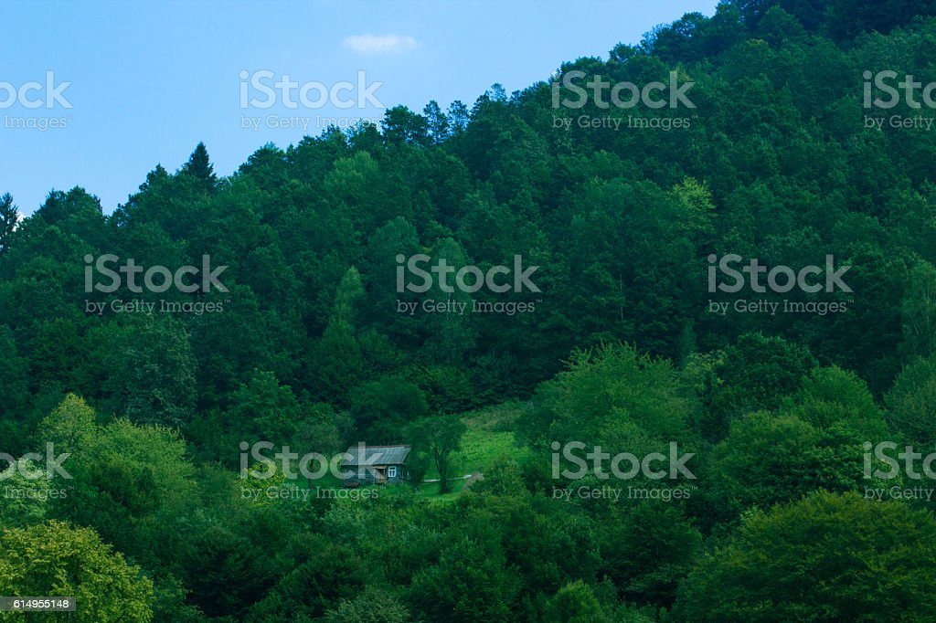 little wooden house at mountains among green forest stock photo