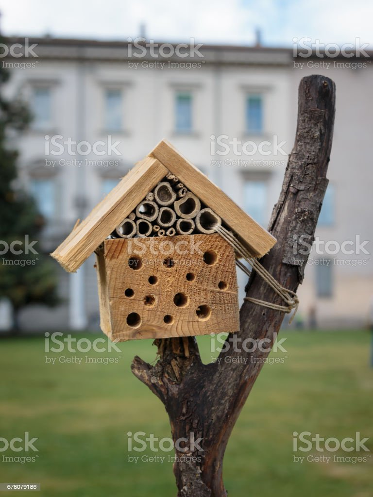 Little Wooden House On Trunk With Small Holes Stock Photo