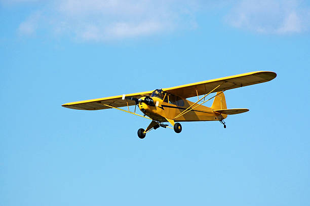 Best Piper Cub Stock Photos, Pictures & Royalty-Free Images - iStock