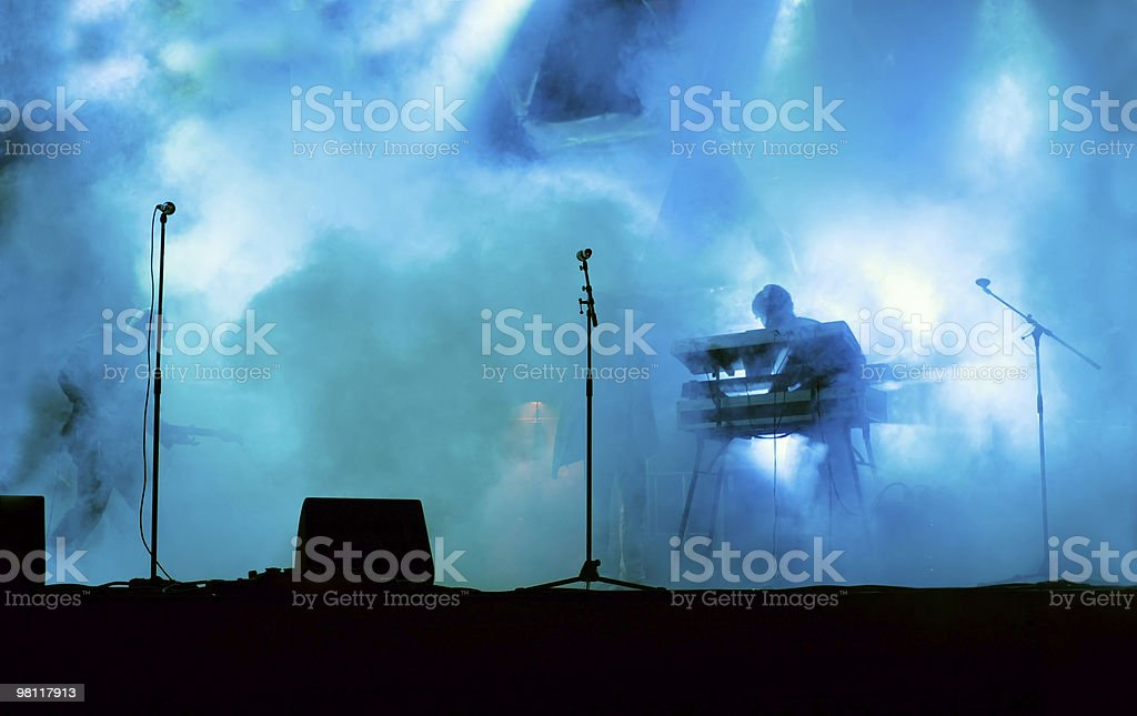 Live on Stage royalty-free stock photo