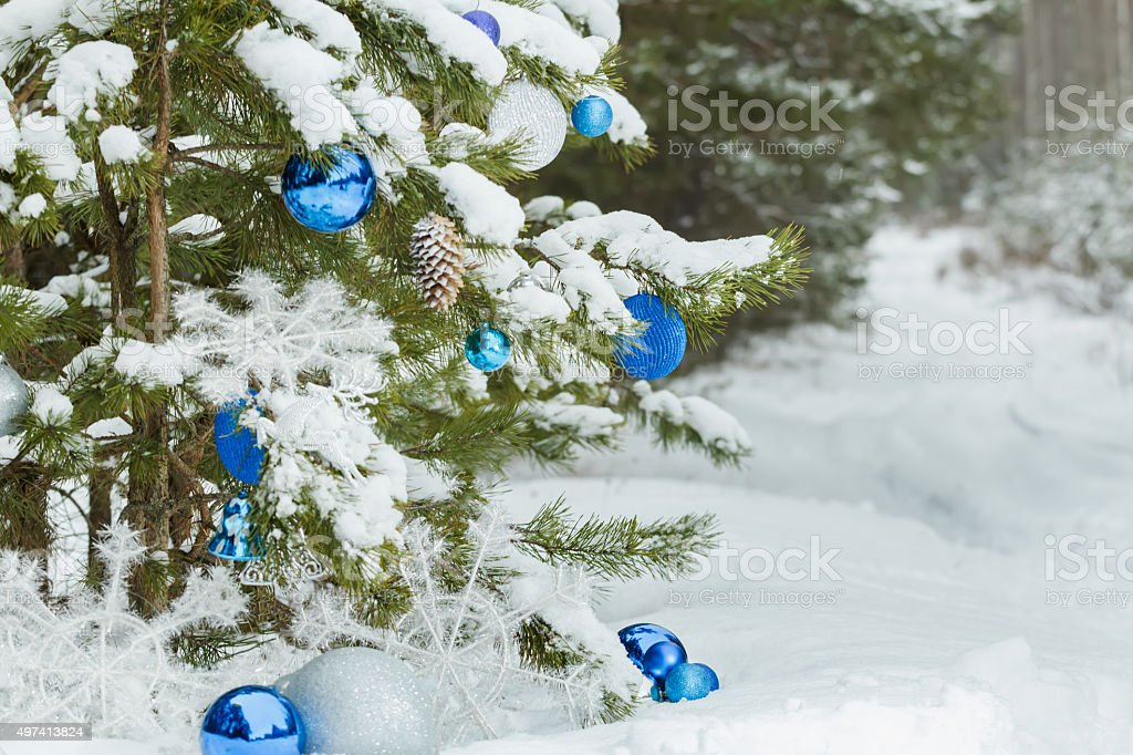 Live pine tree under snow decorated with Christmas ornaments stock photo