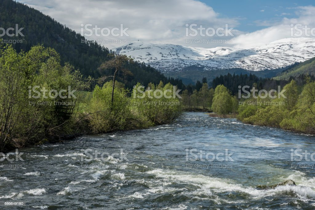 Lively stream from melting snow and ice in spring royalty-free stock photo