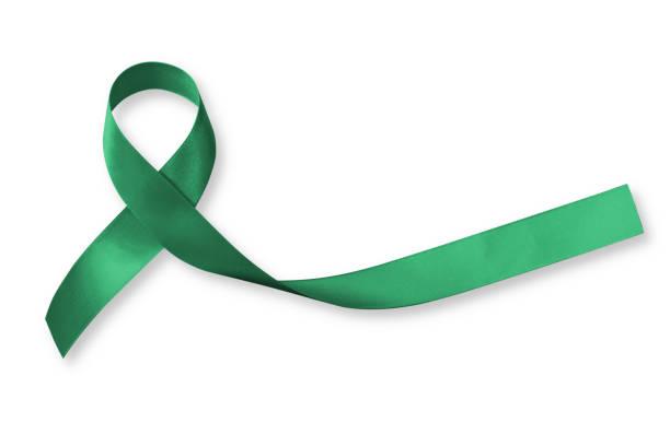 leber cancer awareness band farbe emerald green ribbon isolierten auf weißen hintergrund, clipping-pfad: satin stoff symbolische logo anhebung unterstützung hilfe menschen leben mit tumor-erkrankung - knochenmark spende stock-fotos und bilder