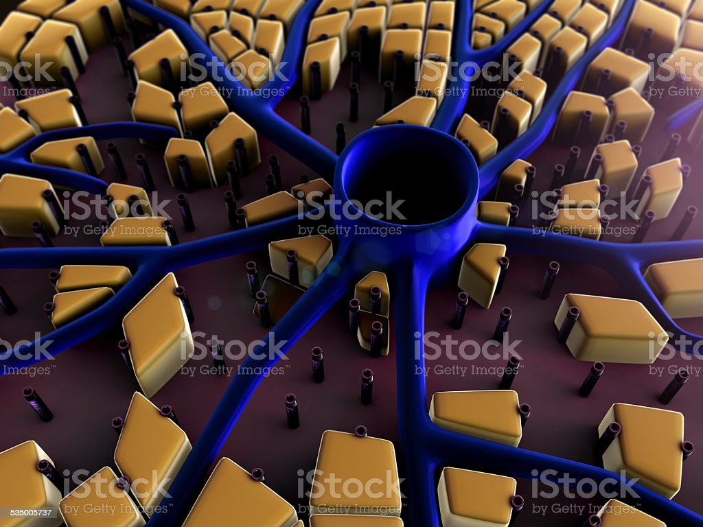 liver, cells stock photo