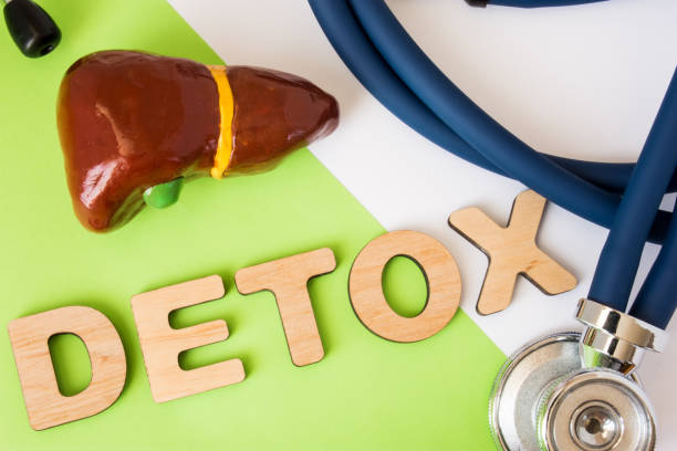 Liver detox concept photo. Word detox of volumetric letters is near 3D liver model and  medical stethoscope. Medical diet program for detoxification and cleanse of biliary system for women and men stock photo