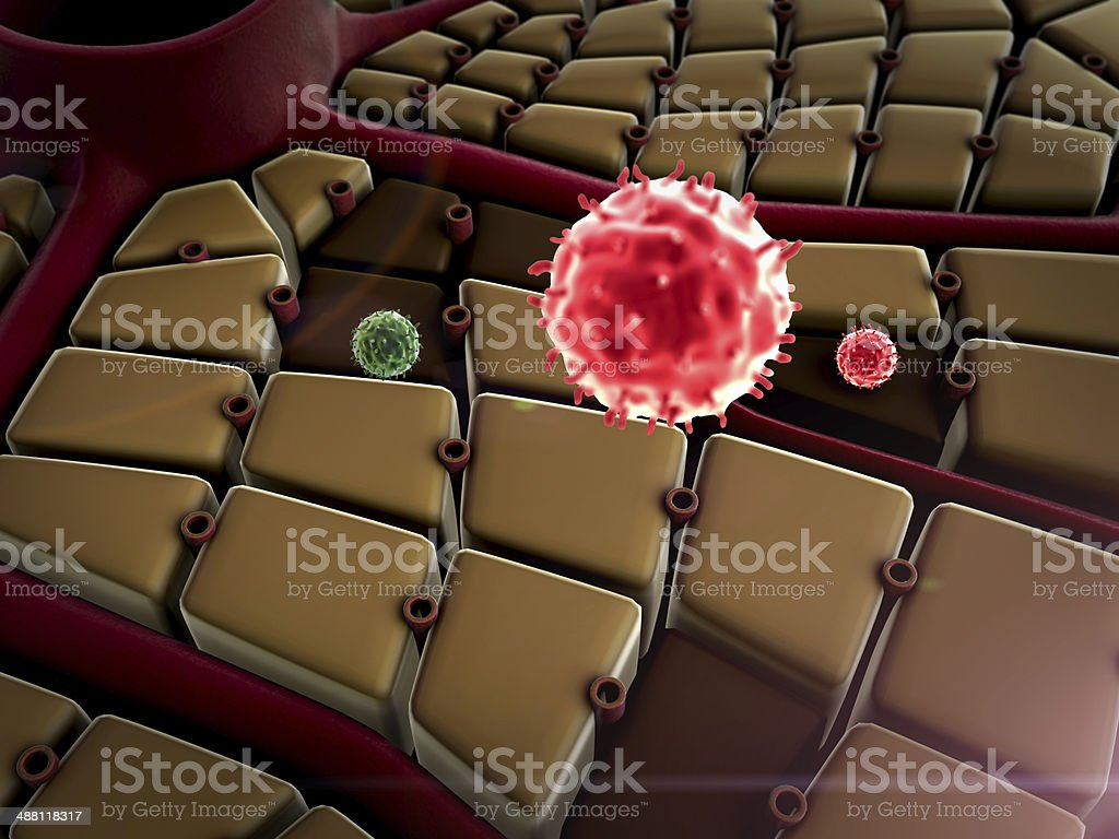 liver, virus royalty-free stock photo