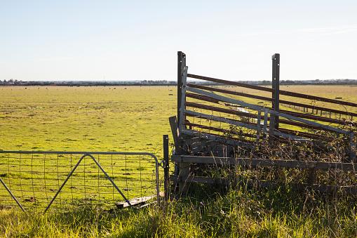 Livestock farm fence and gate above low pastureland in regional Victoria, Australia.