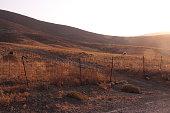 Sunset, Astypalaia, Dodecanese, Grassland, Pasture