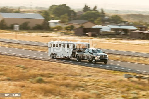Livestock transport in USA with trailers and large pick-up vehicles on state highway 80.