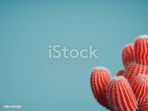 Living Coral color of the Year 2019. Background with cactus in trendy color. 3d render