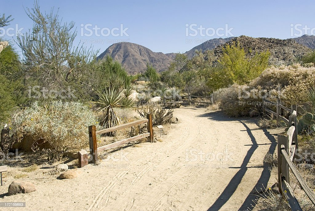 Living Desert California stock photo