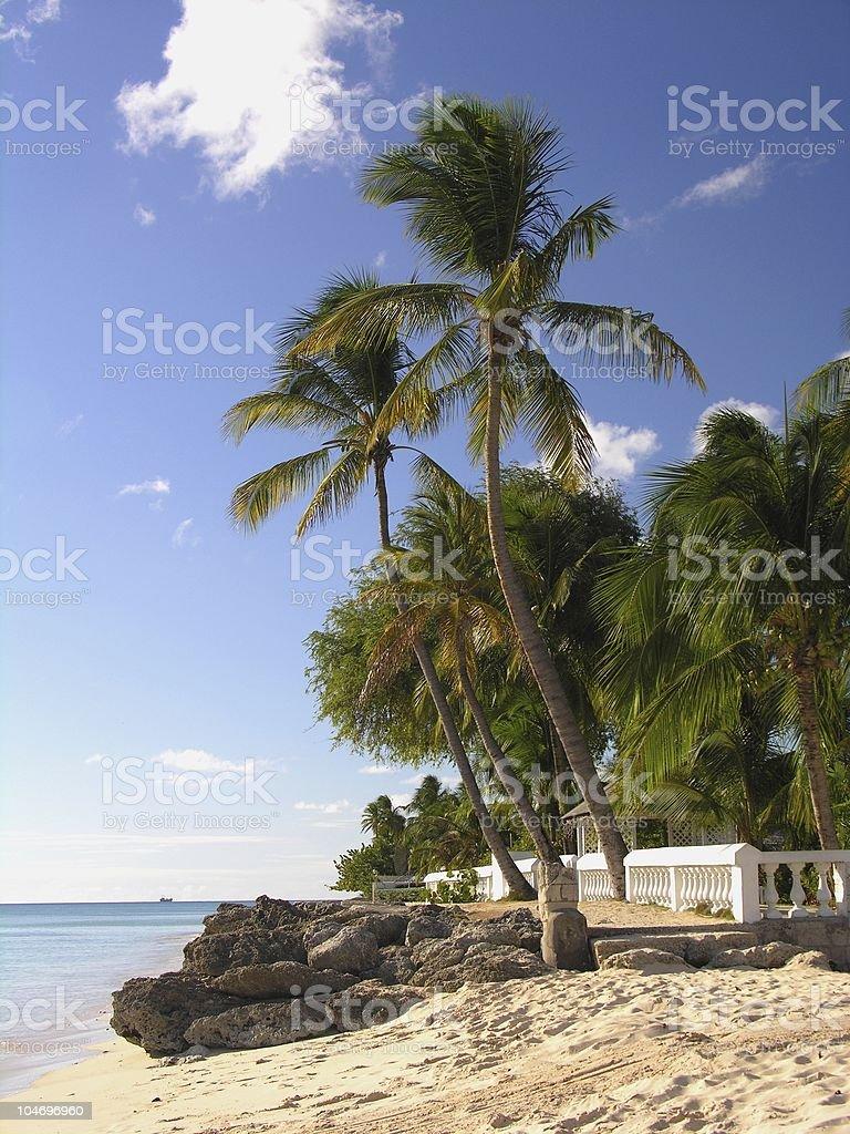 Living in paradies stock photo