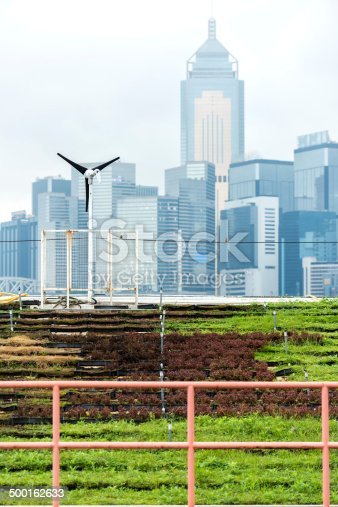 Hong Kong iStockalypse.  A living roof garden of plants and wind turbine with Hong Kong Island in background.