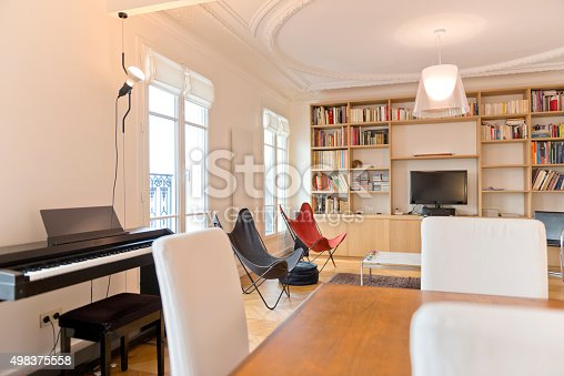 istock Living Room in Luxury Home 498375558