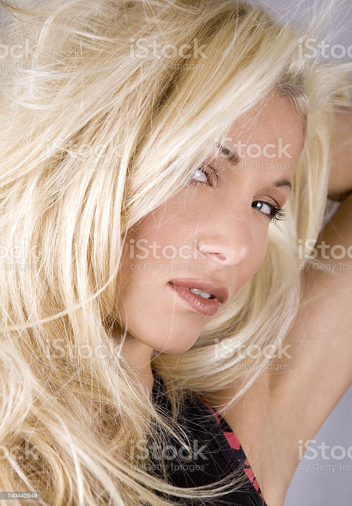 salon style royalty-free stock photo