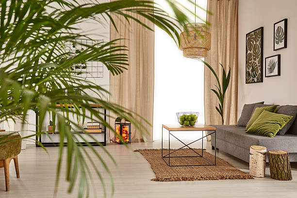 Living room with decorative palm Living room with decorative palm, sofa and table houseplant stock pictures, royalty-free photos & images