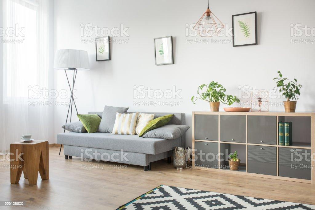 Wohnzimmer Mit Graue Couch Stockfoto und mehr Bilder von Accessoires