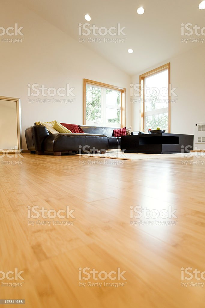 Living Room with Hardwood Floors stock photo