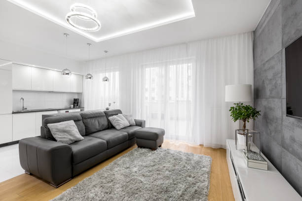 Living room with leather sofa stock photo