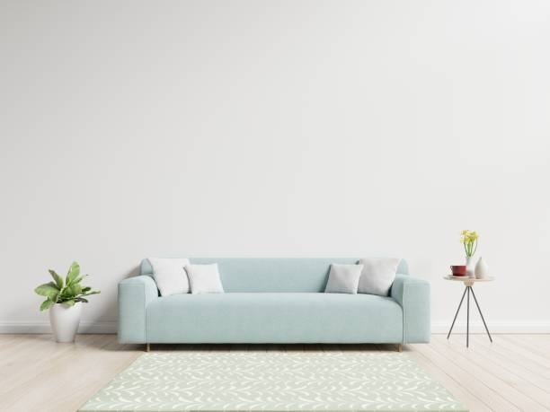 Living room with sofa have pillows Living room with sofa have pillows, plant and vase with flowers on white wall background, 3D rendering sofa stock pictures, royalty-free photos & images