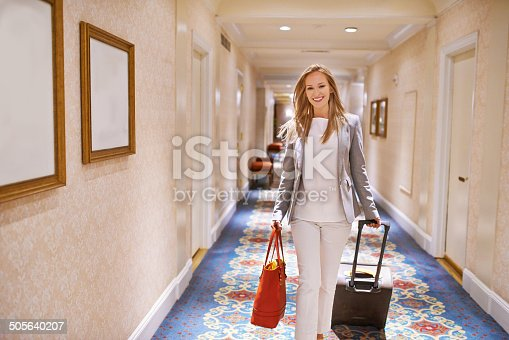istock Living the suite life 505640207