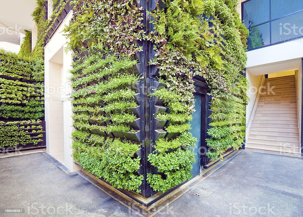 Living Wall Office Facade Corner stock photo