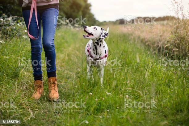 Living with a dog picture id841883794?b=1&k=6&m=841883794&s=612x612&h=kxptef4ir7do1sa7wyiiaov1gsrtsqh6cx4ckkbb828=