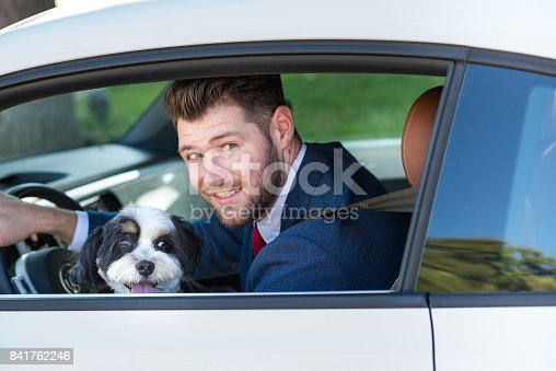 937331052istockphoto Living with Pets - Businessman Driving with His Dog 841762246