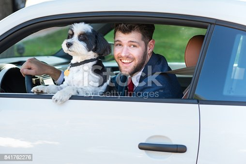 937331052istockphoto Living with Pets - Businessman Driving with His Dog 841762276