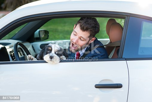 937331052istockphoto Living with Pets - Businessman Driving with His Dog 841764968