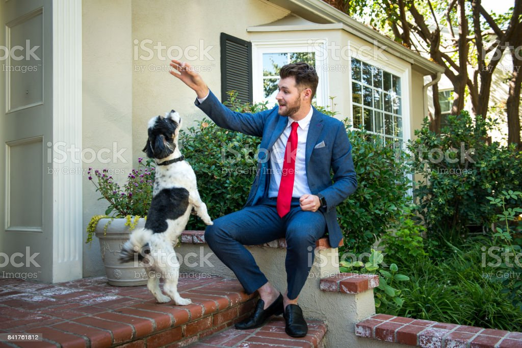 Living with Pets - Businessman Training His Dog stock photo