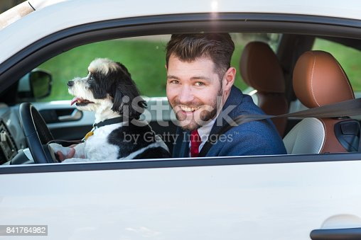 937331052istockphoto Living with Pets - Canine Driver 841764982